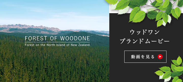 FOREST <br />OF WOODONE